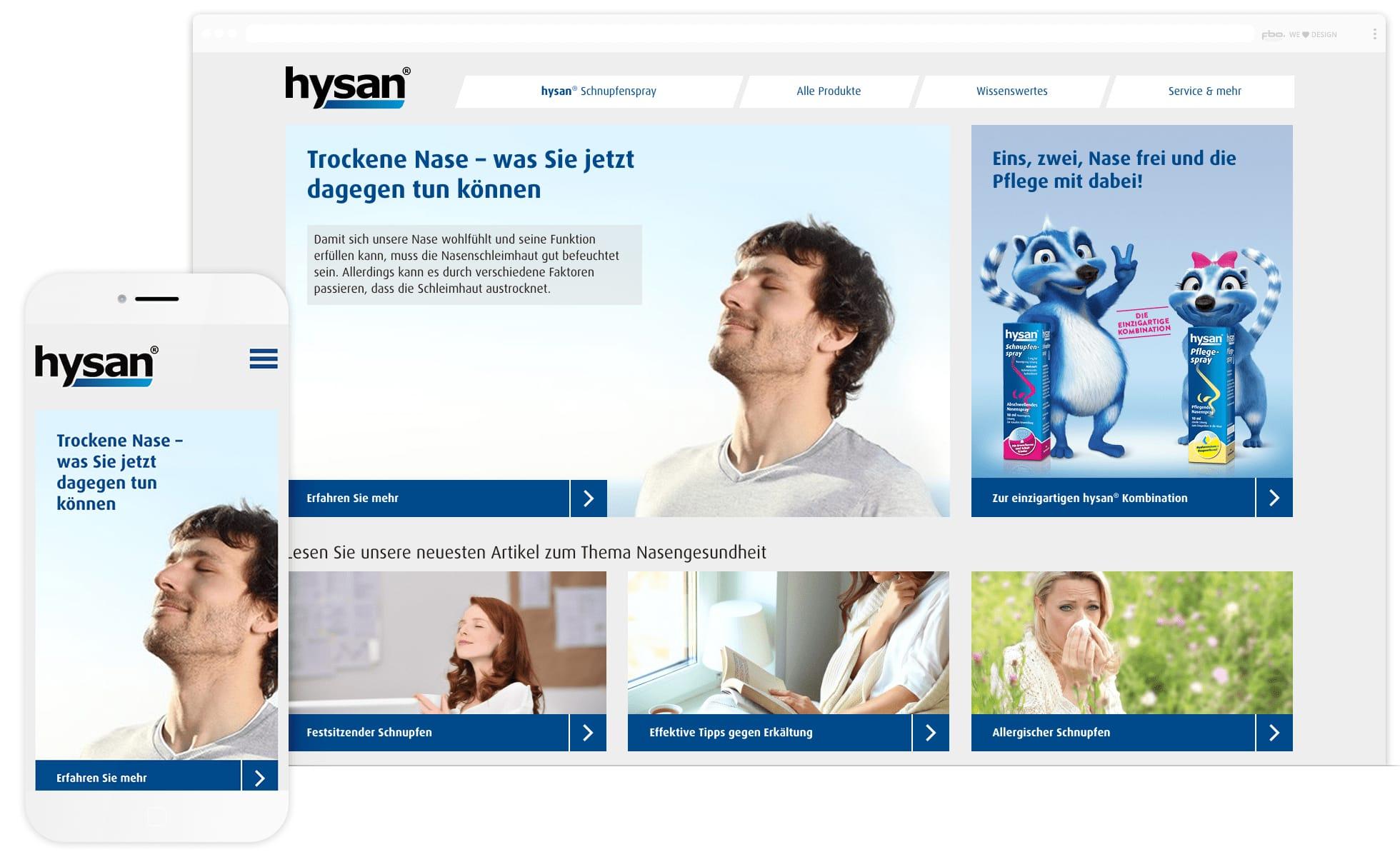 screenshot der hysan webseite